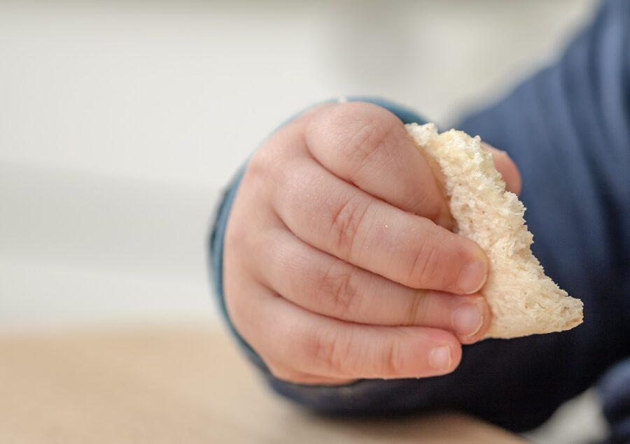 Baby Led Weaning - Quais os primeiros alimentos?