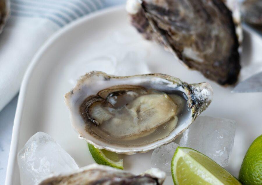 Como Comer ostras